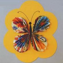 Activité : La carte papillon