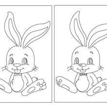 Lapin de Pâques jeu des différences