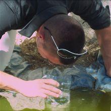 Fabrique un observateur de poissons!