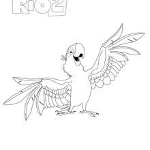 Blu, le perroquet de RIO 2