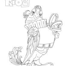 Coloriage : Hector, le méchant cacatoès de RIO 2