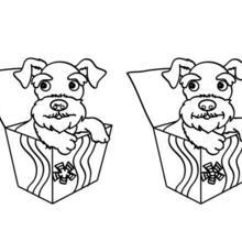 coloriages de chien chiot. Black Bedroom Furniture Sets. Home Design Ideas
