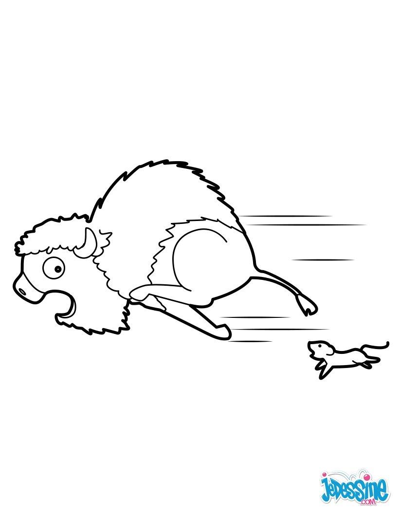 Coloriages bison peureux - Bison coloriage ...