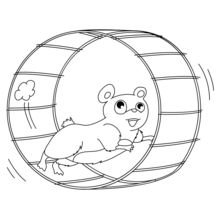 Hamster dans sa roue