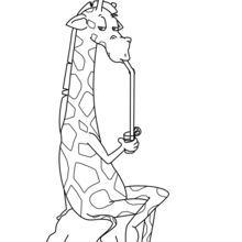 Coloriage : Girafe buvant un cocktail