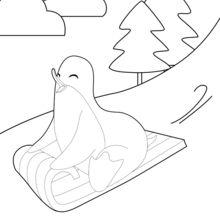 Coloriage : Pingouin faisant de la luge