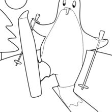 Coloriage : Pingouin au ski