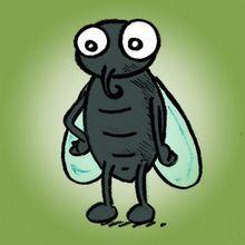 La mouche qu voulait être un papillon