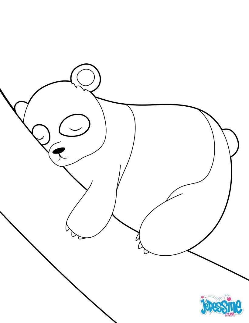 Coloriages panda assoupi - Coloriage panda ...