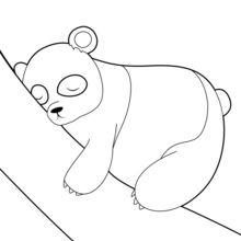 Coloriage : Panda assoupi