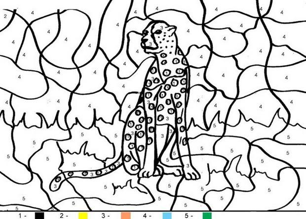 Doggy Number Coloring Pages