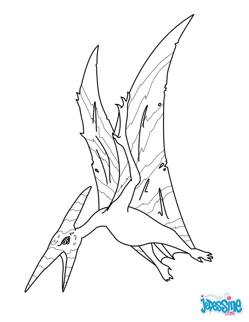 Coloriages pteranodon - Jeux de dinosaure volant ...