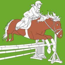 Coloriage : Coloriages équitation