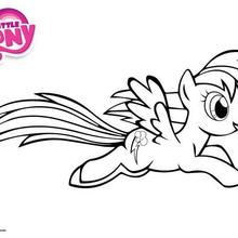 Coloriage : Rainbow Dash