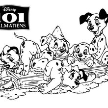 Coloriage Disney : Les 101 dalamatiens à colorier