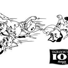 Coloriage Disney : Les petits dalmatiens
