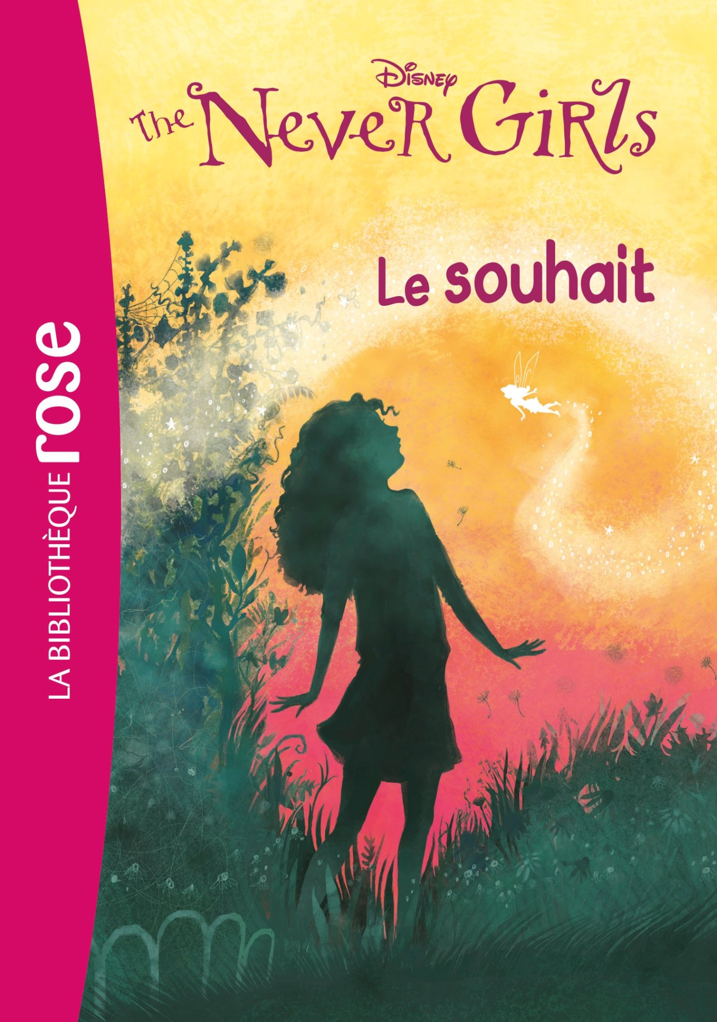 The Never Girls 03 : Le souhait