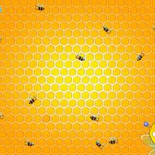 Fond d'écran : Abeilles dans leur ruche