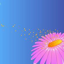 Fond d'écran : Fleur et pollen