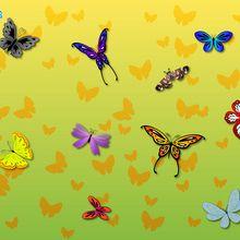 Fond d'écran : Papillons