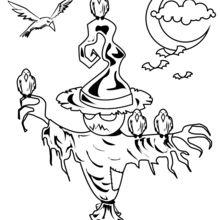 Coloriage d'Halloween : L'Épouvantail Jack O' Lantern