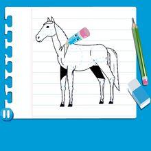 Leçon de dessin : Dessiner un cheval