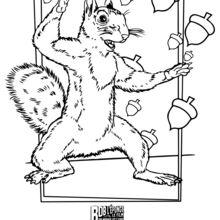 Coloriage : Sandy l'écureuil