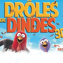 DRÔLES DE DINDES