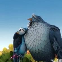 A quelle altitude les oiseaux volent-ils ?