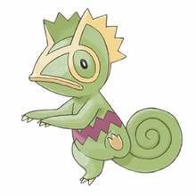 Kecleon de dos