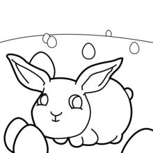 Bébé lapin de Pâques