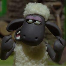 Actualité : Découvre les petits clips de Shaun Le Mouton !