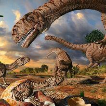 Reportage : L'histoire des dinosaures