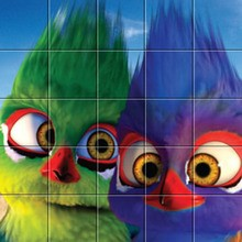 Puzzle : Les Gossip Birds