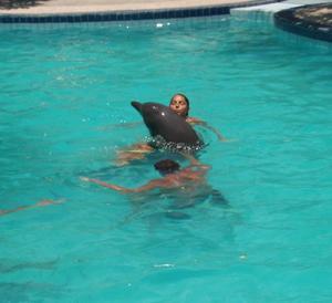 galerie-photos-sur-les-dauphins