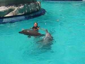 galerie-photos-sur-les-dauphins-n-2