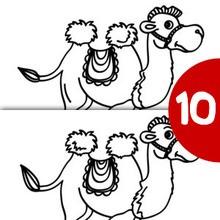 Jeu des différences : Le chameau