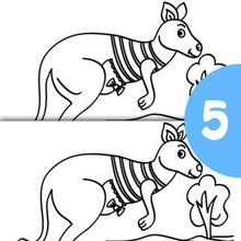 Kangourou rayé 5 différences