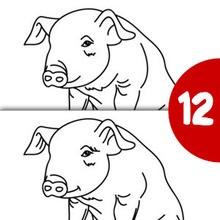 Jeu des différences : Le petit cochon