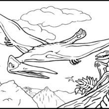 Coloriage : Reptile volant