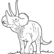 Coloriage : Tricératops