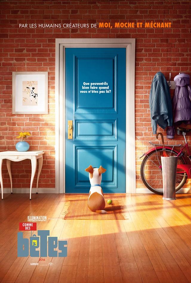 Comme des bêtes, la bande annonce qui nous montre la vie cachée de nos animaux domestiques
