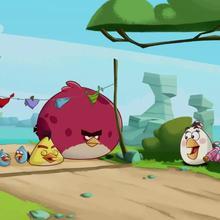 épisode d'Angry Birds : Course d'oiseaux