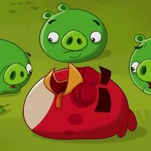 Les cochons hypnotiques