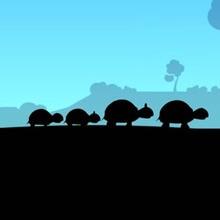 Comptine : La famille tortue