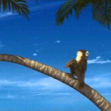 Le singe musicien