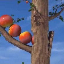 Pluie de pommes