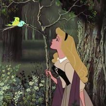 La Belle au bois dormant, Je voudrais