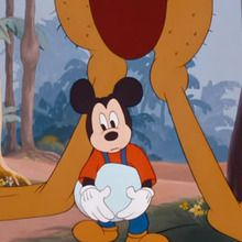Dessin animé : Mickey, Pluto et l'autruche