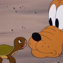 Dessin animé : Pluto et la tortue